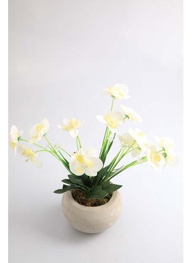 Kibrithane Çiçek Yapay Çiçek Beton Saksı Mini Beyaz Kumaş Orkide Kc00200810 Renkli